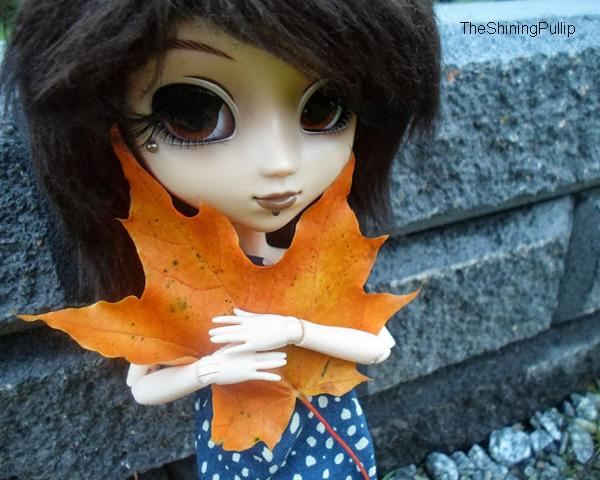C'est l'automne ! (2)