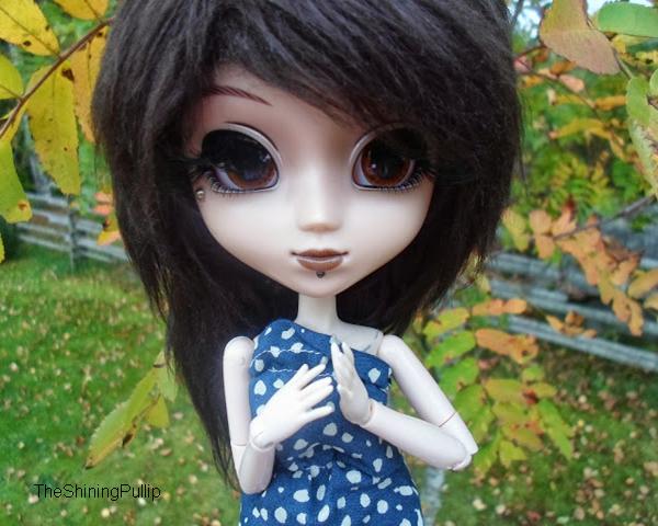 C'est l'automne ! (3) -fin-