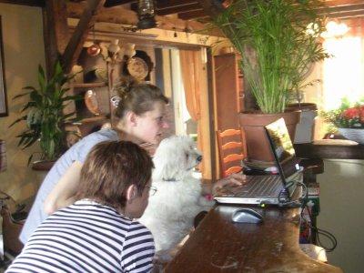 le premier cyber dog!!!!!!!!!!!!