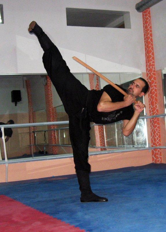 Ninja Side Kick