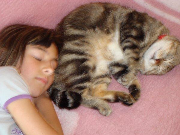 mon ancien chat il est mort il a environt 5 ans, j'avait 9 ans quand il est mort :'(