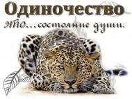 tkuzemchak's blog