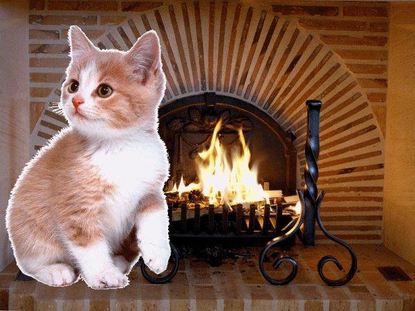 gifs animes feu de cheminee