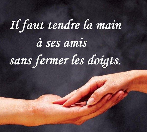 Les ami(es) ..........………