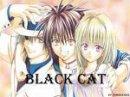 Photo de black-cat-love