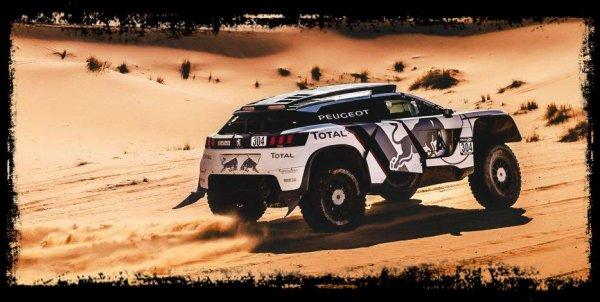 2 Victoires pour une Auto,13 Titres pour un Champion (Dakar)