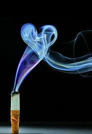 Fumer pas de tabac , vous n'avez que deux poumons ,Fumer de la weed , vous avec mille neurones.