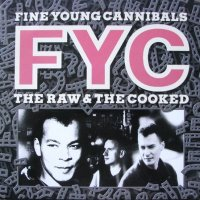 title / Fine Young Cannibals - She Drives Me Crazy (1990)