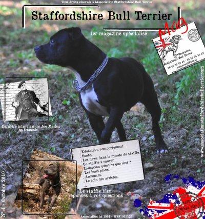 1 er Magazine spécialisé sur le Staffordshire Bull terrier en France - sortie le 05 Octobre 2010