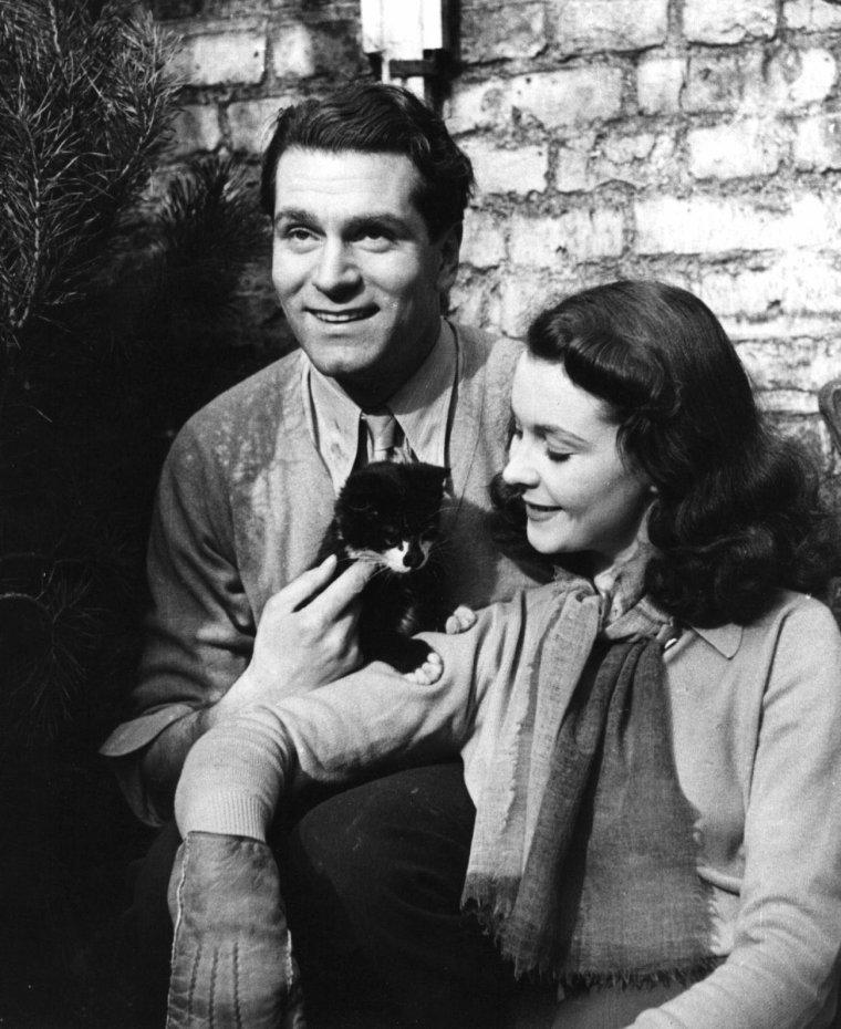 """COUPLE DE LEGENDE / Vivien LEIGH and Laurence OLIVIER / Mariés le 31 Août 1940, divorcés le 6 Janvier 1961. / RENCONTRE / Laurence OLIVIER découvre Vivien LEIGH dans """"The Mask of Virtue"""". Alors qu'ils jouent des amants dans le film """"L'Invincible Armada"""" en 1937, une attirance mutuelle se développe et ils commencent une liaison amoureuse dès la fin du tournage. Laurence OLIVIER est alors marié à l'actrice Jill ESMOND. À cette période, Vivien LEIGH lit """"Autant en emporte le vent"""", le roman de Margaret MITCHELL et demande à son agent américain de souffler son nom à David O. SELZNICK, qui en prépare l'adaptation. Elle le fit remarquer à un journaliste, « Je me suis moi-même choisie pour être Scarlett O'HARA », et le critique C. A. LEJEUNE se souvient d'une conversation dans laquelle l'actrice « nous souffla tous » avec l'affirmation qu'OLIVIER « ne jouera pas Rhett BUTLER, mais je jouerai Scarlett O'HARA. Vous verrez ». Vivien LEIGH joue ensuite le rôle d'Ophélie dans l'adaptation d'""""Hamlet"""" par OLIVIER dans une production londonienne. C'est durant cette session que l'acteur découvre ses brusques changements d'humeur alors qu'elle se préparait à entrer sur scène. Sans raison apparente, elle commença à lui crier au visage, avant de plonger dans le silence, le regard vide. Elle joua ensuite parfaitement son rôle et avait oublié l'incident le jour suivant. Ils commencèrent à vivre ensemble, sans obtenir ni l'un ni l'autre le divorce de leurs conjoints."""