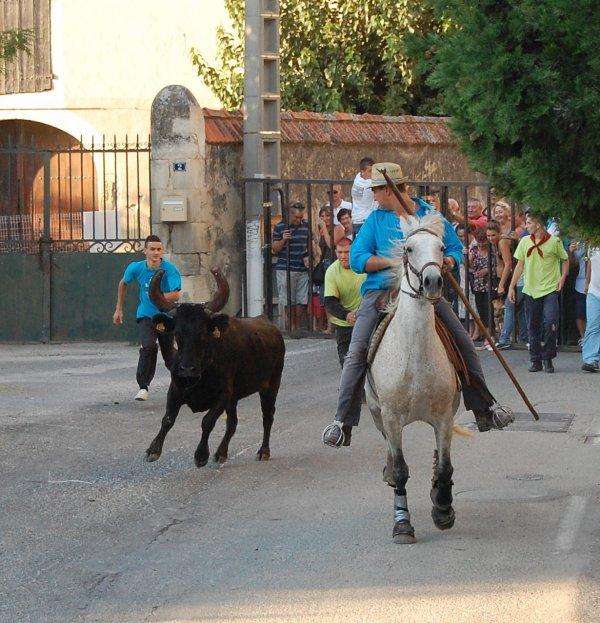 Théziers 10.09.2011