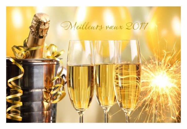 bonjour et très bonne journée a toutes et tous..bisous bonne année 2017