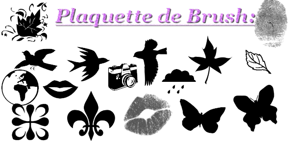 Pack/plaquette de brush n°2
