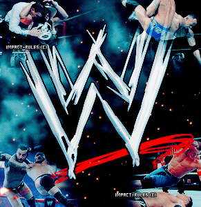 ARTICLE #2 - WORLD WRESTLING ENTERTAINMENT (WWE)