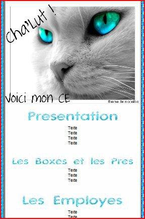 Thème CE chat yeux bleus