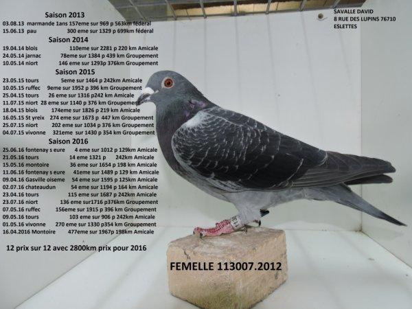 FEMELLE 113007.2012