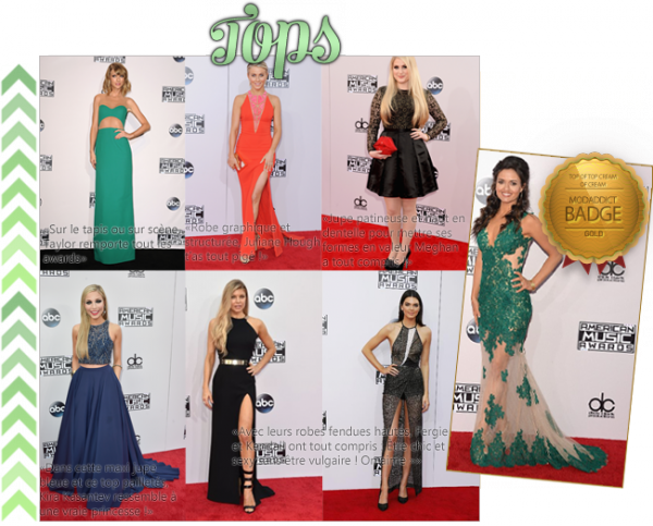 >> Style : TOP/FLOP AMAS 2014
