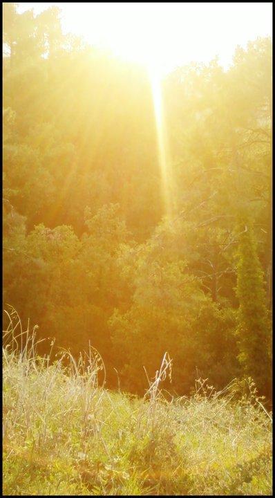 I waant sun