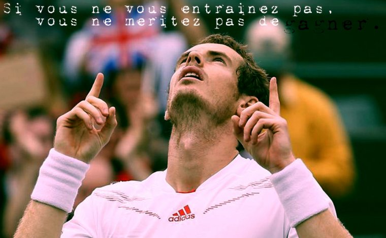 Envie Andy Murray