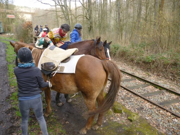 Mars 2014 : Mon cheval me vend du rêve :D