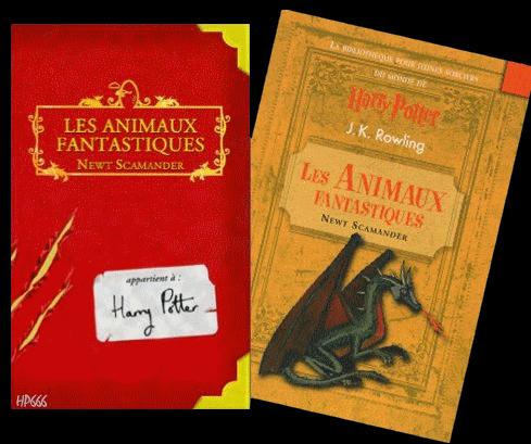 La bibliothèque pour jeunes sorciers du monde de Harry Potter