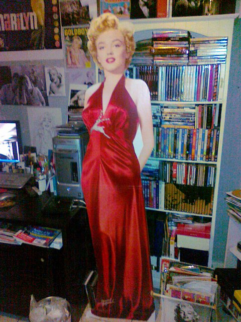 COLLECTION MARILYN-STAND UP