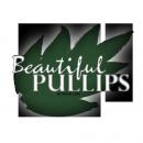 Photo de BeautifulPullips