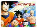 Photo de Dragonballz31000