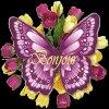 Bonjour A Tous