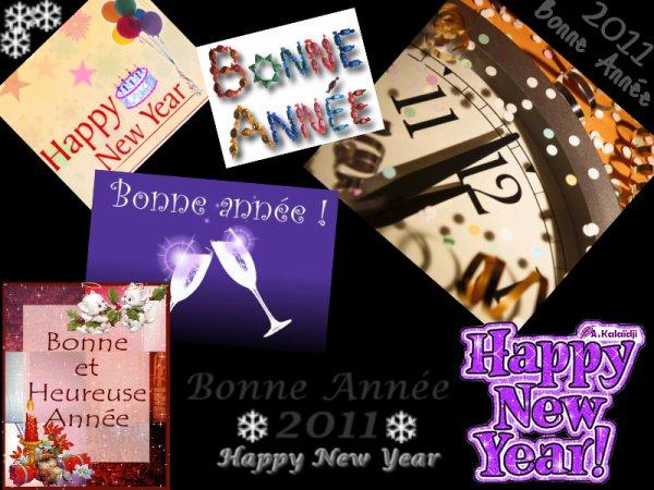 Bonne année 2♡11 !