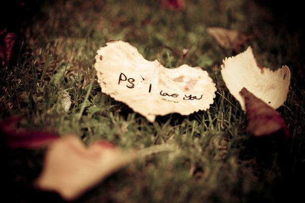 Quelques mots d'amour .. (8)