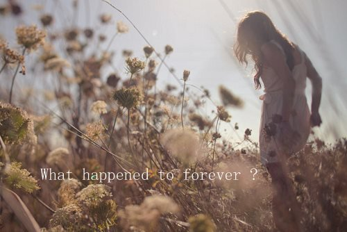 What happened to forever?
