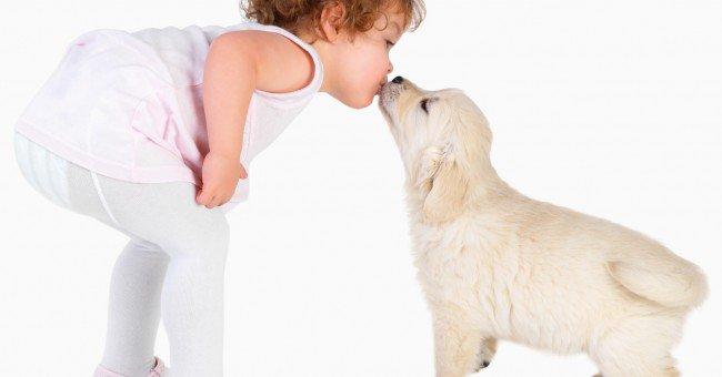 Bien choisir son chien. » Acte 1 [Critères pour choisir son chien] chapitre 2 [ Adopter un chiot,un décision importante ].