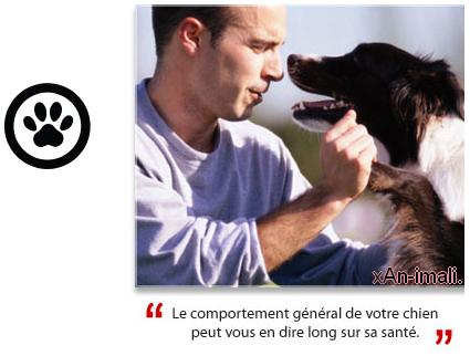 Bien choisir son chien. » Acte 1 [Critères pour choisir son chien] chapitre 4 [ Comment choisir un chiot en bonne santé ].