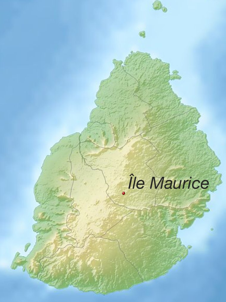 Question time n°2: L'île Maurice ♡