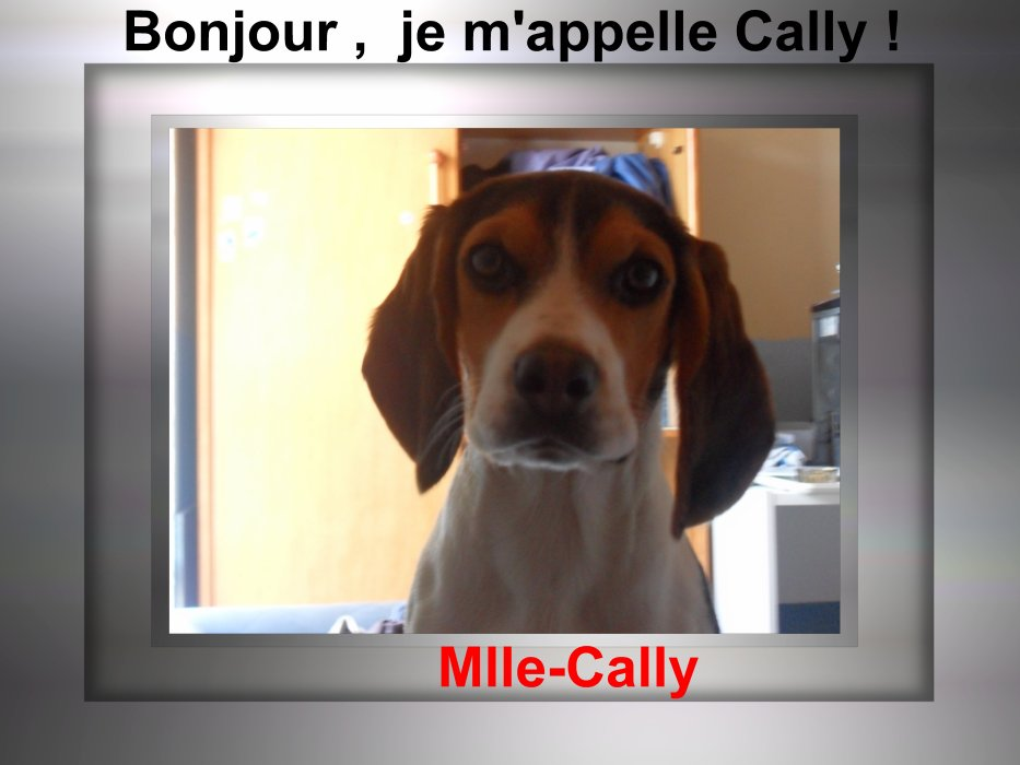 * Mlle-Cally. ♥