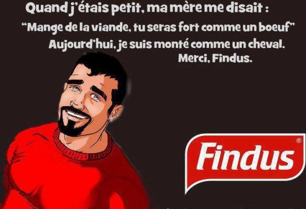 heureusement il y a Findus!!