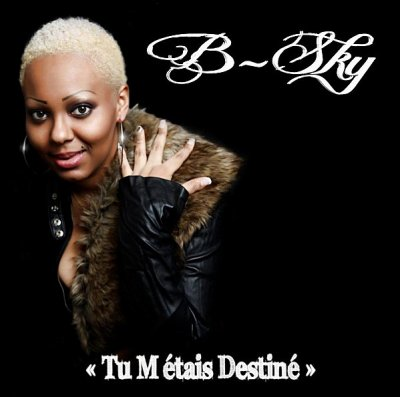 B-Sky - Tu M'étais Destiné (2011)
