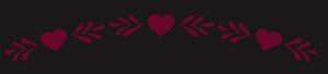 Les Coeurs Fêlés Gayle Forman