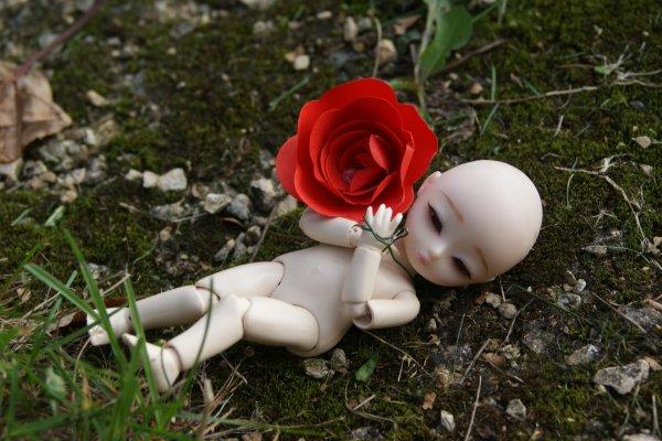 ~Petite Rose et Petit Garçon ♪