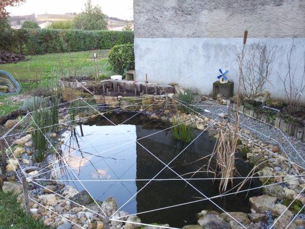 modif du bassin