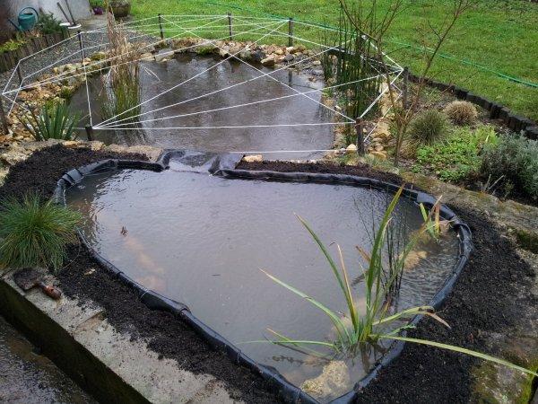 suite modif bassin