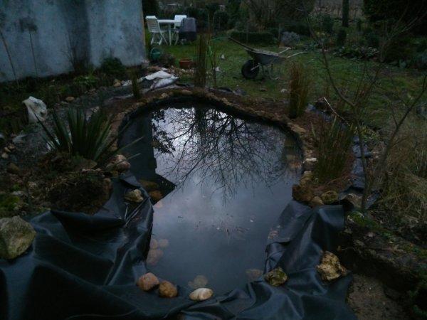 bassin suite