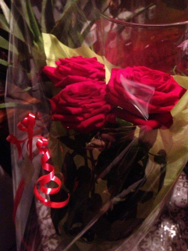 les première rose que tu mes offerte :( snifff