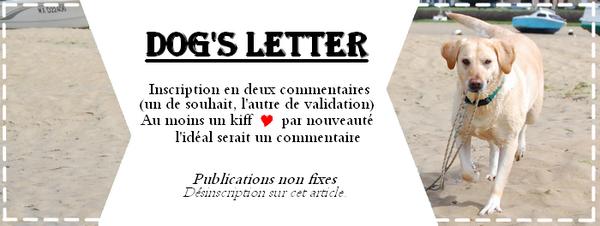 Sachez, amis de la Dog's Letter, qu'un chien est le meilleur messager qui soit.