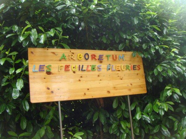 SORTIE A L'ARBORETUM DES FEUILLES FLEURIES A ST ELOI 58