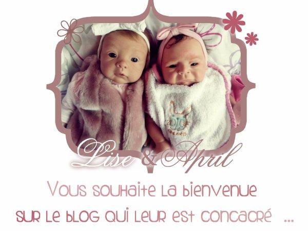 • Page O1; O2; O3; O4.   ~ Article O1 :: Bienvenue.  My-Precious-Babies ©