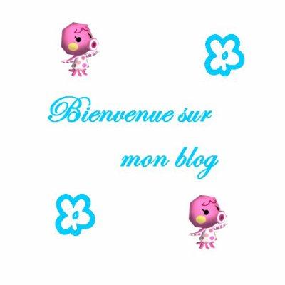 Bienvenue a mon blog