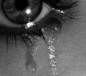 oui non je ne pleure plus pour toi