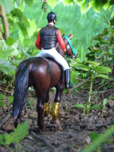 Partie Actions du Centre Equestre :